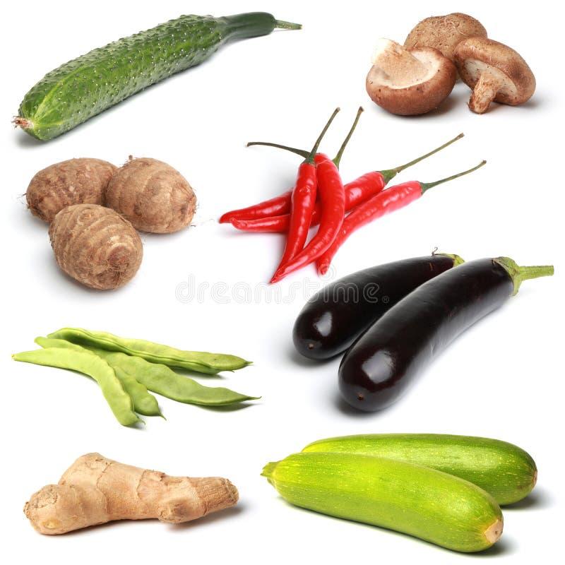 Coleção vegetal imagens de stock royalty free