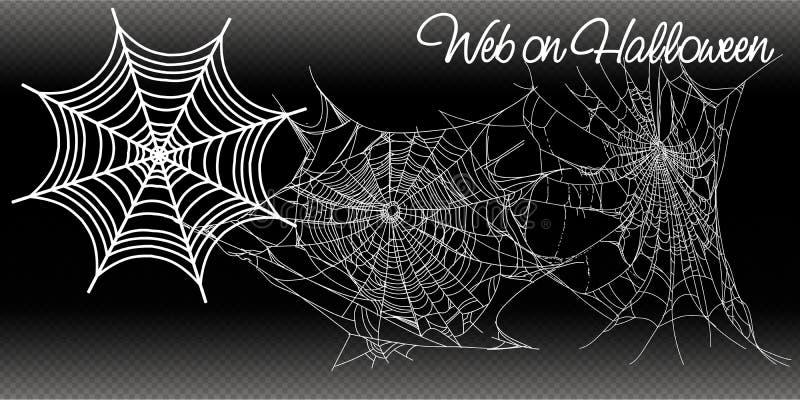 Cole??o da teia de aranha, isolada no fundo preto, transparente Spiderweb para o projeto de Dia das Bruxas Moldes do vetor ilustração do vetor