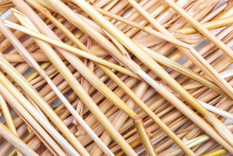 Cole??o da textura da palha das fibras vegetais e naturais imagens de stock royalty free
