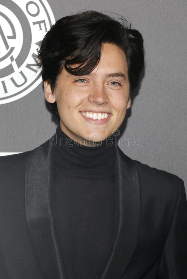 Cole Sprouse. At the Art Of Elysium`s 11th Annual Heaven Celebration held at the Barker Hangar in Santa Monica, USA on January 6, 2018 stock photography