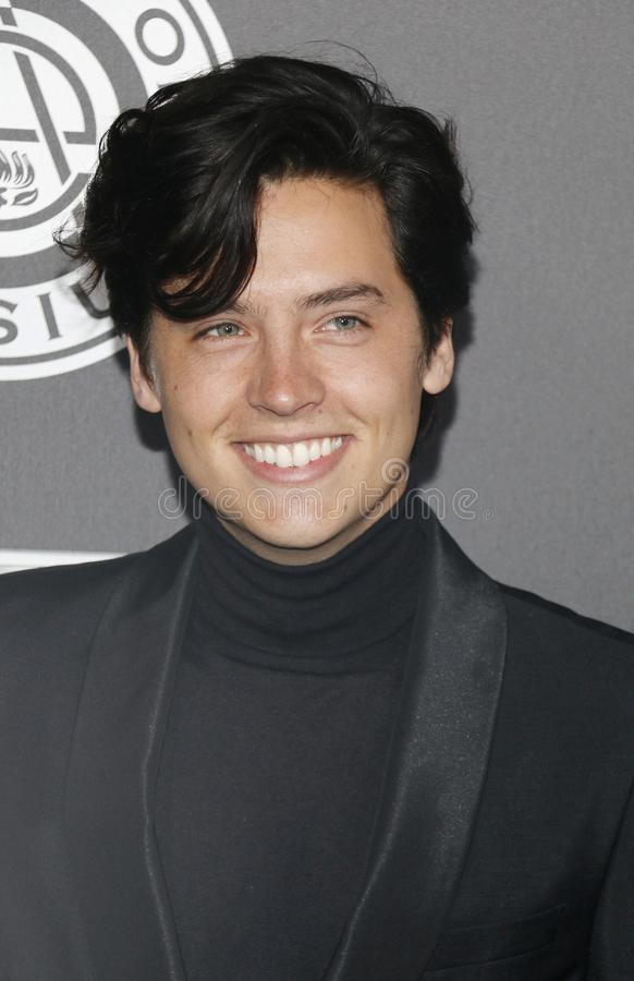 Cole Sprouse. At the Art Of Elysium`s 11th Annual Heaven Celebration held at the Barker Hangar in Santa Monica, USA on January 6, 2018 stock images