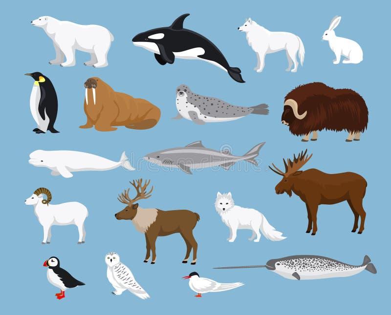 Colección ártica de los animales ilustración del vector