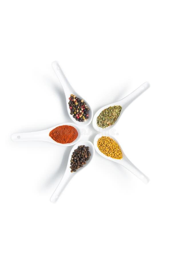 Colección aromática secada colorida de las especias en las cucharas de cerámica blancas fotos de archivo libres de regalías