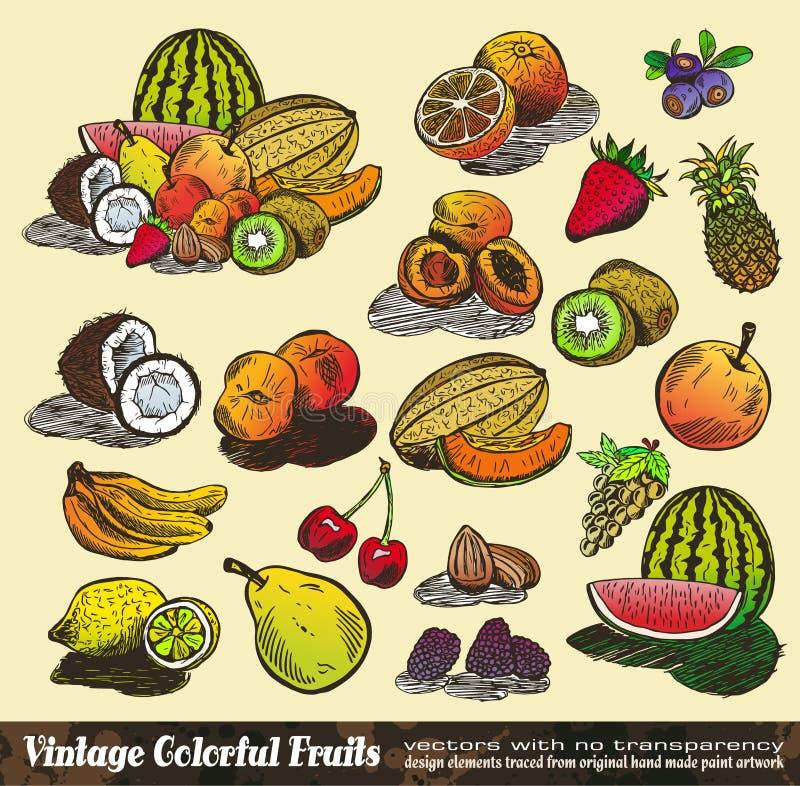 Colección colorida de las frutas de la vendimia ilustración del vector