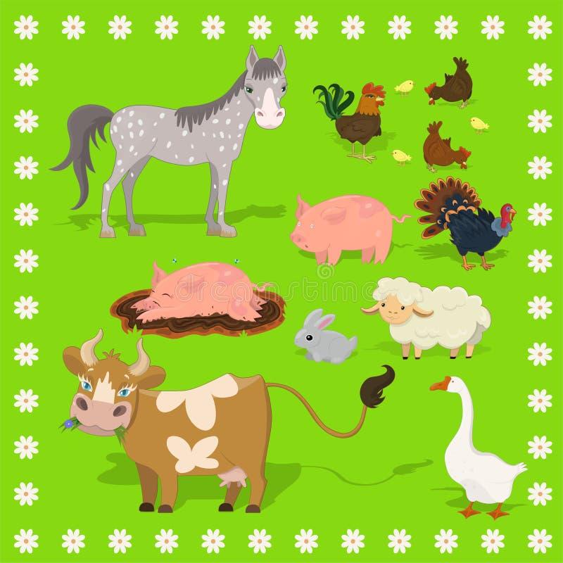 Colección de animales del campo ovejas, conejo, vaca, cerdo, gallo, pollo, pavo, caballo Cap?tulo de flores Sistema del vector de ilustración del vector