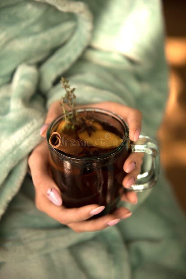 Colección de bebidas calientes en un vidrio con las paredes dobles aisladas Cacao, café, té fotos de archivo libres de regalías