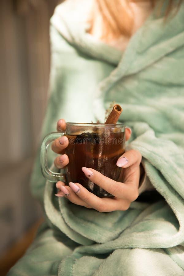 Colección de bebidas calientes en un vidrio con las paredes dobles aisladas Cacao, café, té foto de archivo libre de regalías