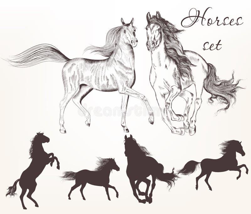 Colección de caballos dibujados mano del vector libre illustration