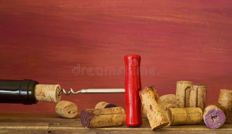 Colección de corchos del vino fotografía de archivo libre de regalías