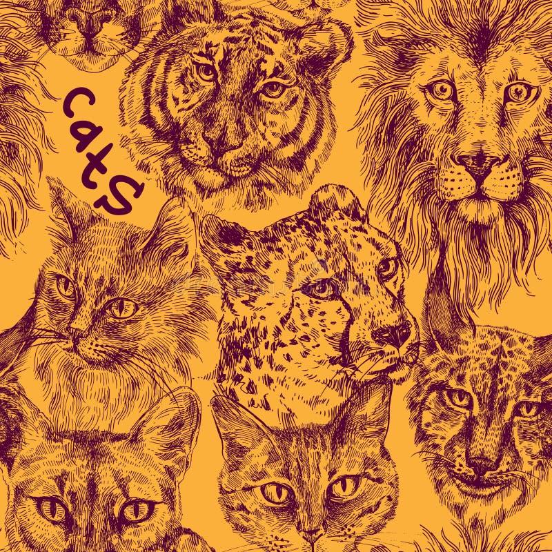 Colección de diversos gatos stock de ilustración