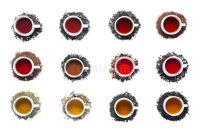 Colección de diversos tés en tazas fotos de archivo
