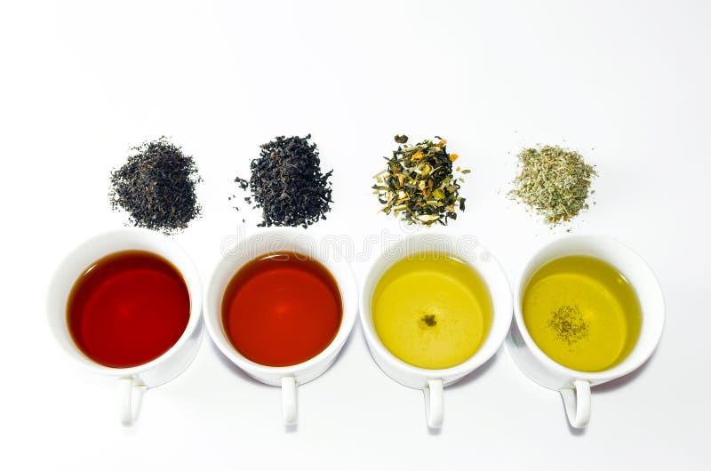 Colección de diversos tés en tazas con las hojas de té en un fondo blanco fotografía de archivo libre de regalías