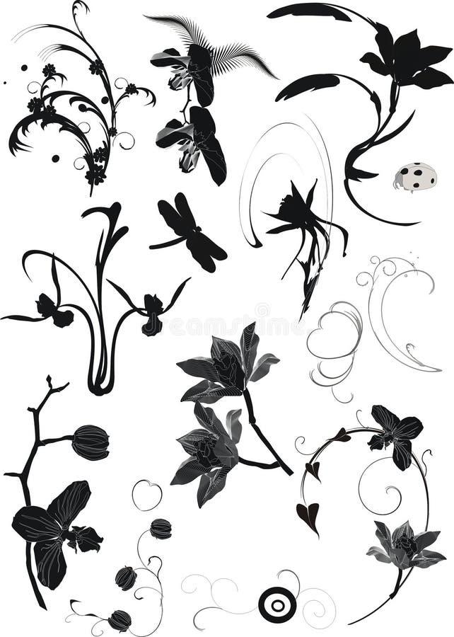 Colección de elementos florales libre illustration