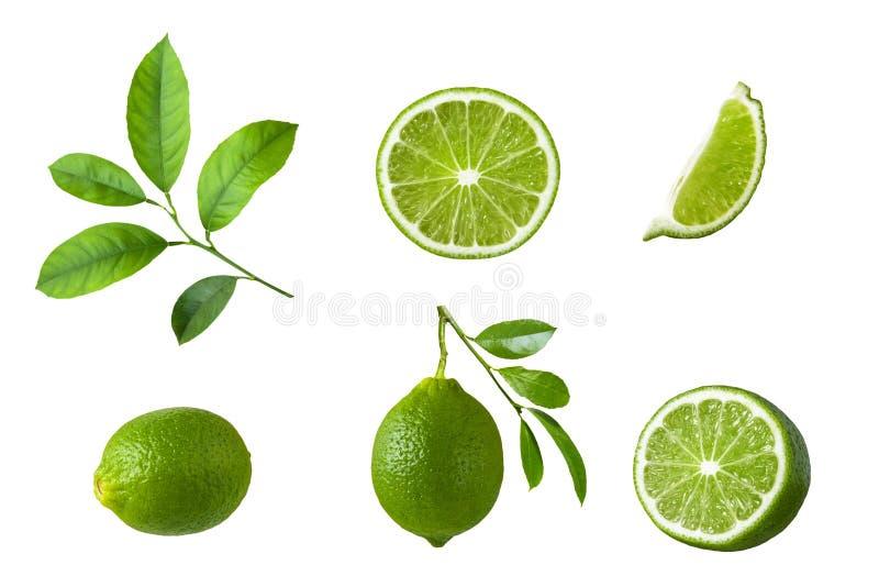 Colección de fruta de la cal con las hojas del verde aisladas en el fondo blanco fotografía de archivo