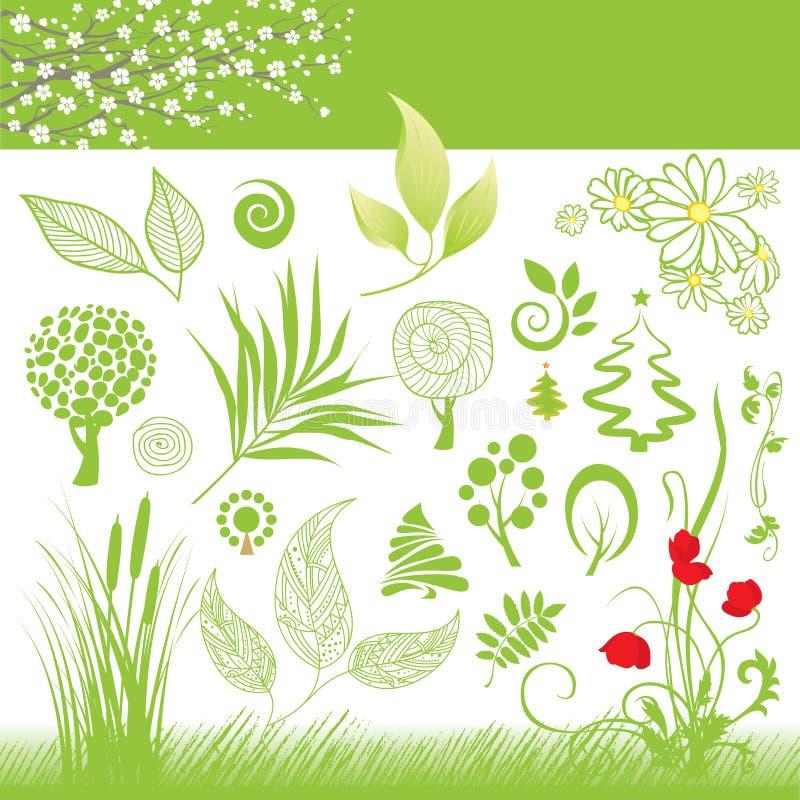 Colección de hoja y de árbol ilustración del vector