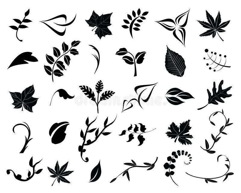 Colección de hojas ilustración del vector
