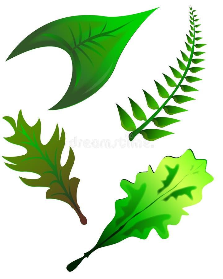 Colección de hojas libre illustration
