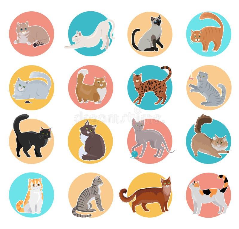 Colección de iconos con el gato en diseño plano stock de ilustración