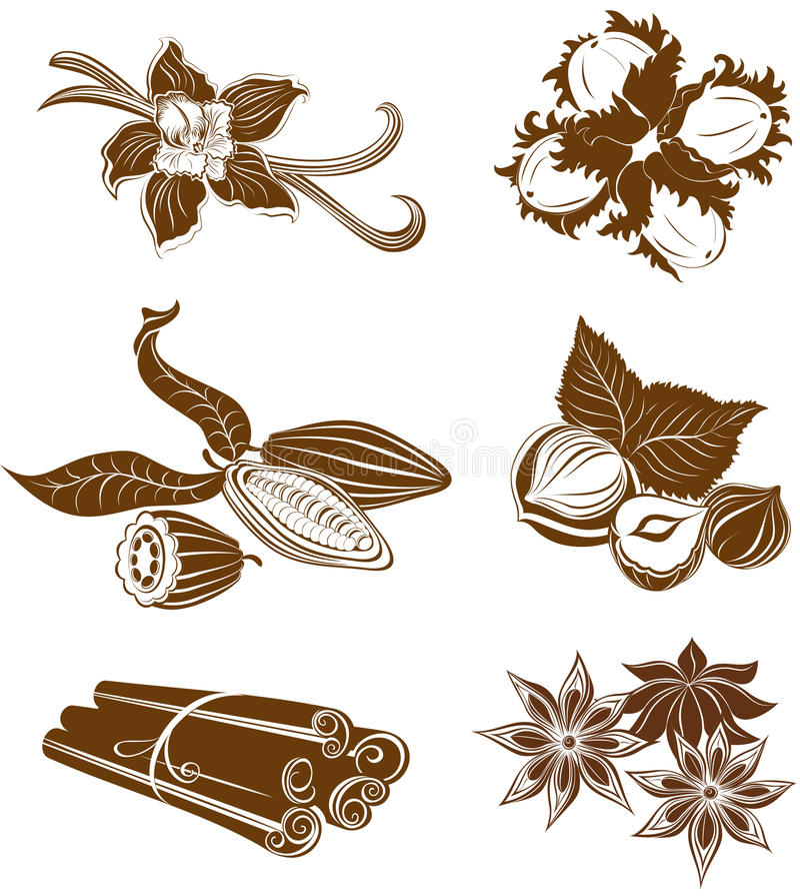 Colección de ingredientes del postre. Avellanas, granos de cacao, Vanil libre illustration