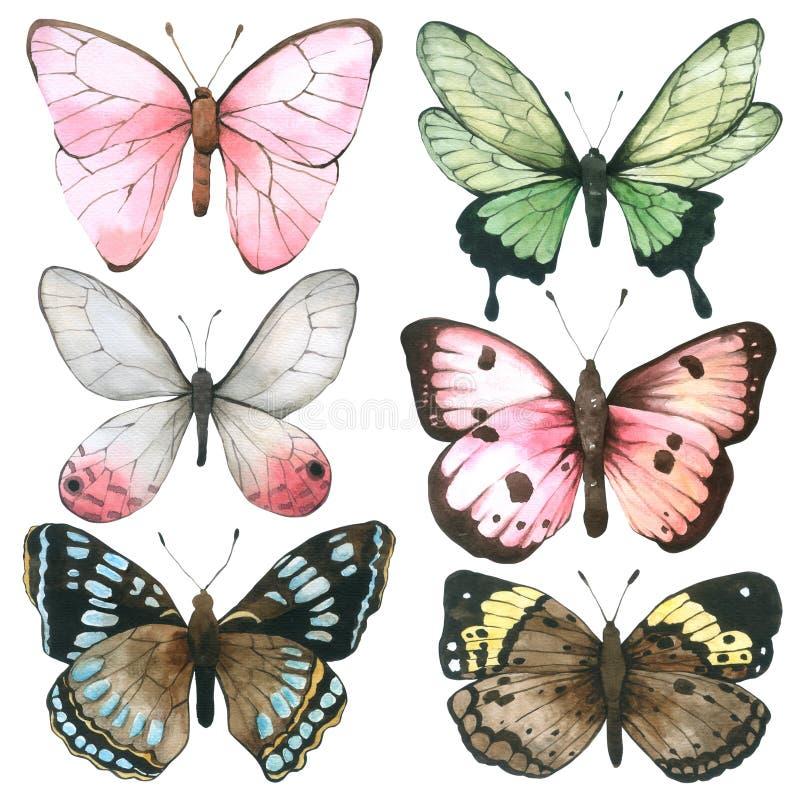 Colección de la acuarela de la mariposa aislada en el fondo blanco, sistema de la mano de la mariposa dibujado pintado para la ta ilustración del vector