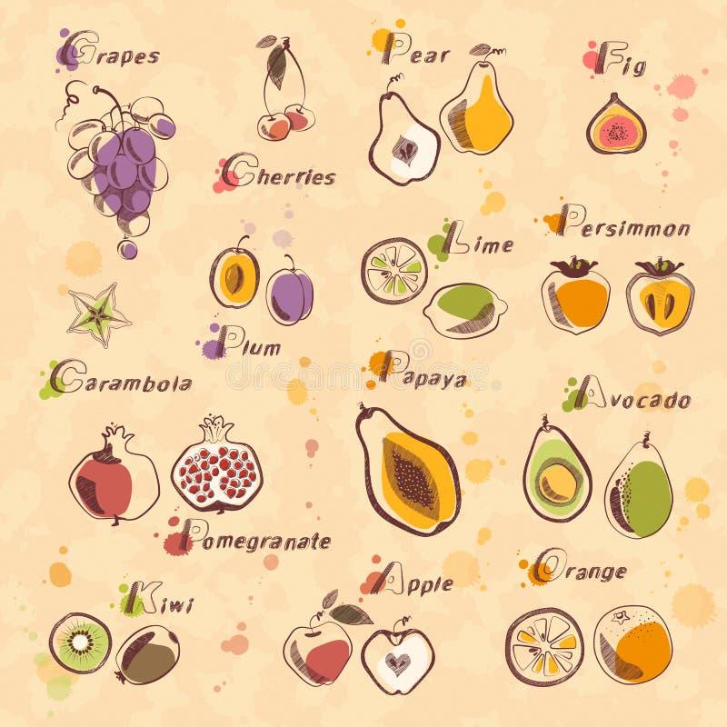 Download Colección de la fruta ilustración del vector. Ilustración de gráfico - 44855543