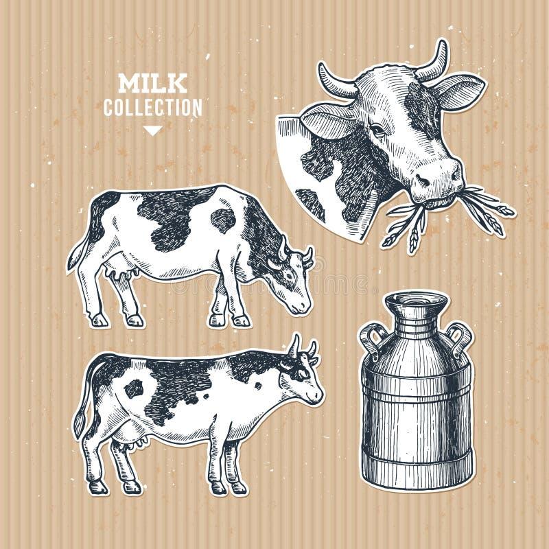 Colección de la granja de la leche Ejemplo grabado vaca Agricultura del vintage Ilustración del vector libre illustration