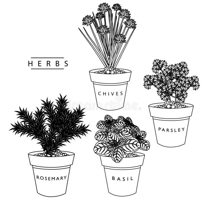 Colección de la hierba stock de ilustración