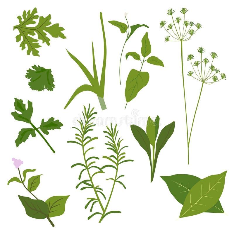 Colección de la hierba