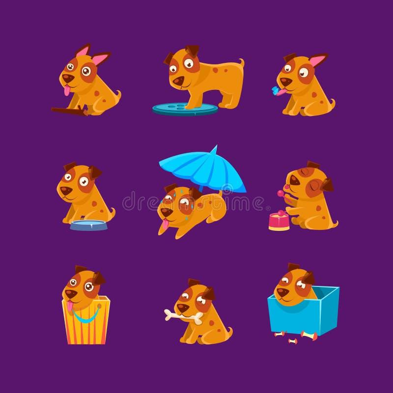 Colección de las actividades diarias del perrito del animal doméstico ilustración del vector