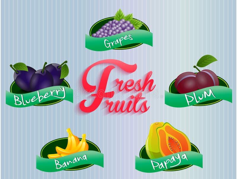 Colección de las etiquetas de las frutas libre illustration