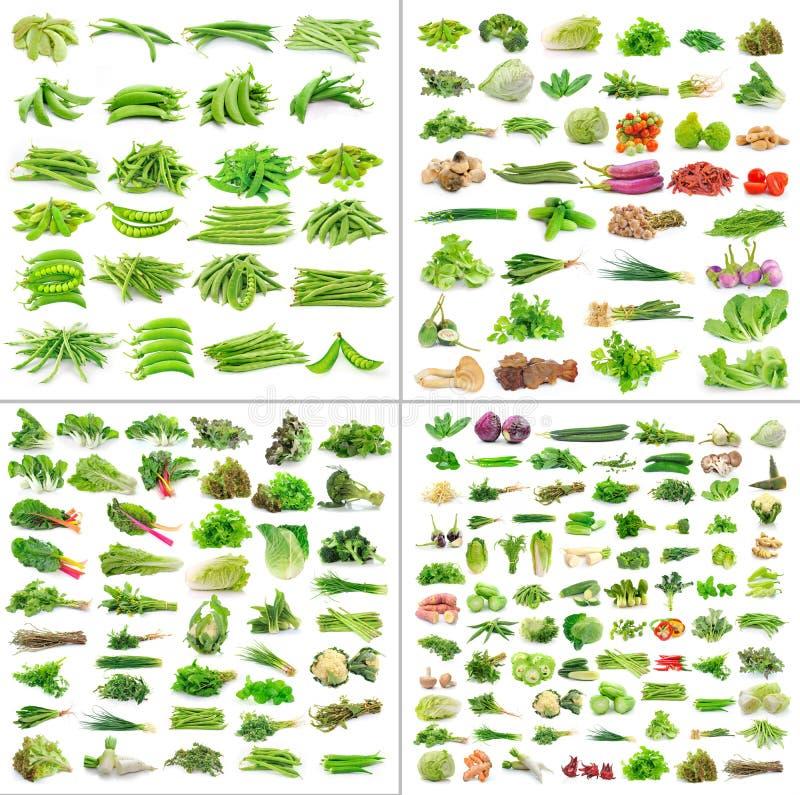Colección de las verduras en el fondo blanco fotos de archivo libres de regalías