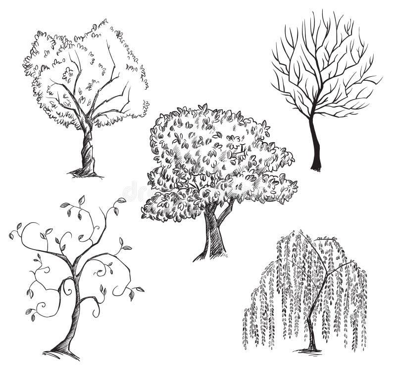 Colección de los árboles del vector libre illustration