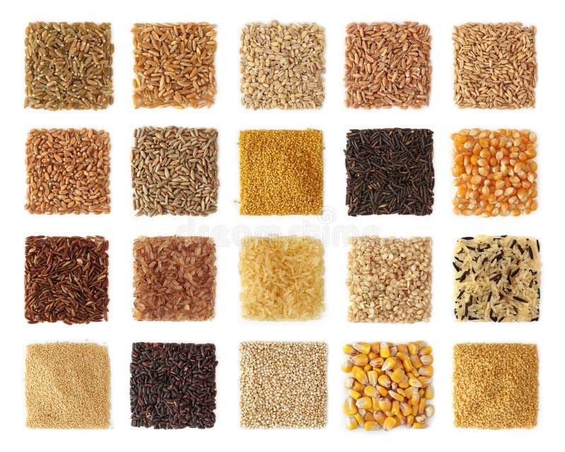 Colección de los cereales foto de archivo libre de regalías