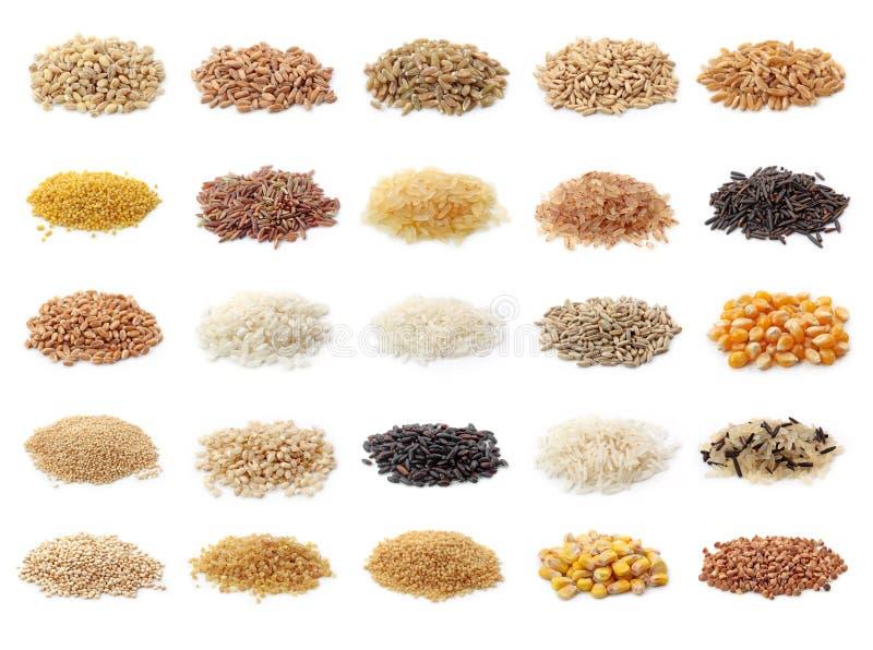 Colección de los cereales fotografía de archivo libre de regalías