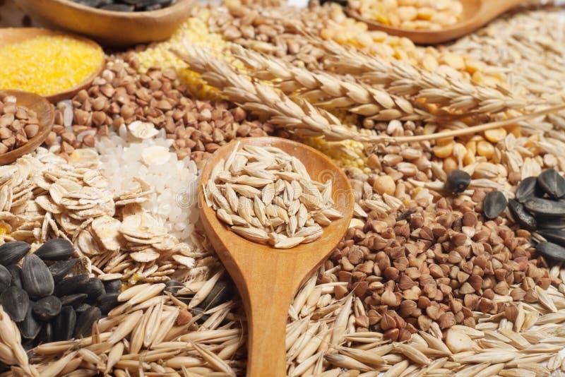Colección de los cereales imagen de archivo libre de regalías