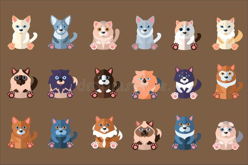 Colecci?n de los gatos grandes Animales dom?sticos Animales dom?sticos caseros Siam?s, abisinio, ragdoll, noruego, sphynx, escoc? stock de ilustración