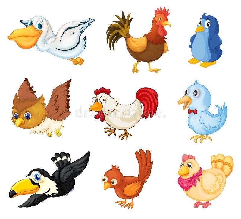 Colección de pájaros ilustración del vector