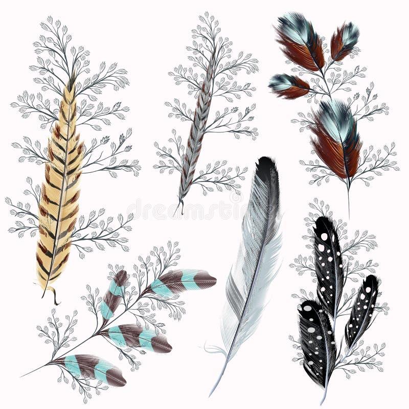 Colección de plumas del boho libre illustration