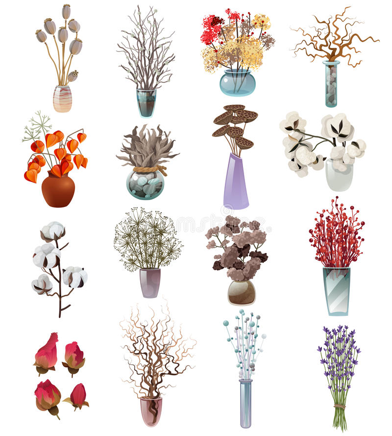 Colección de ramos secos de las flores en floreros stock de ilustración