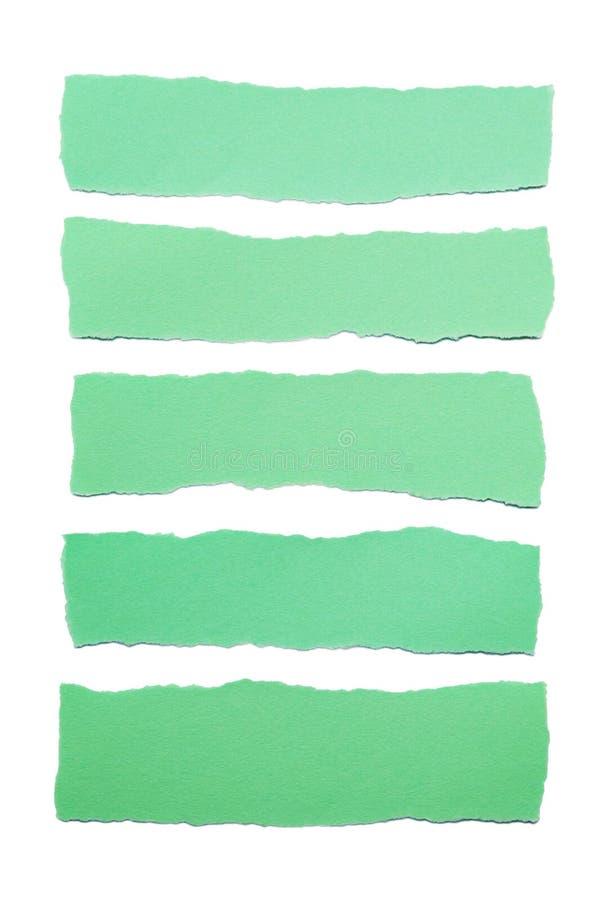 Colección de rayas del Libro Verde con los bordes rasgados aislados en el fondo blanco fotos de archivo