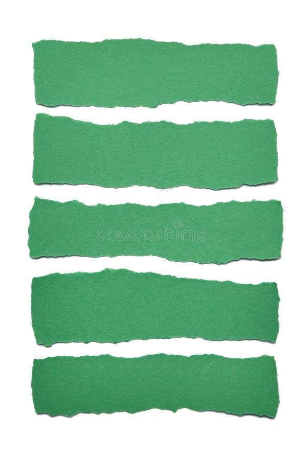 Colección de rayas del Libro Verde con los bordes rasgados en el fondo blanco foto de archivo libre de regalías