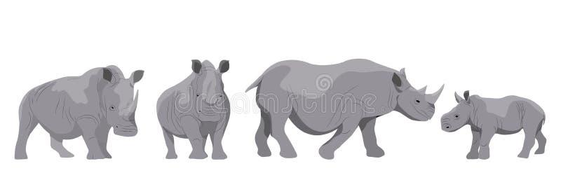 Colección de rinocerontes africanos blancos y negros adultos y de sus jóvenes ilustración del vector