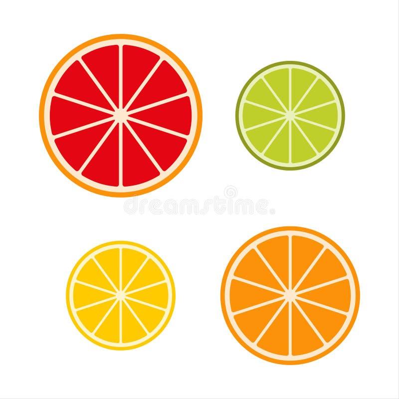 Colección de slicee, de pomelo, de cal, de limón y de naranja de la fruta cítrica libre illustration