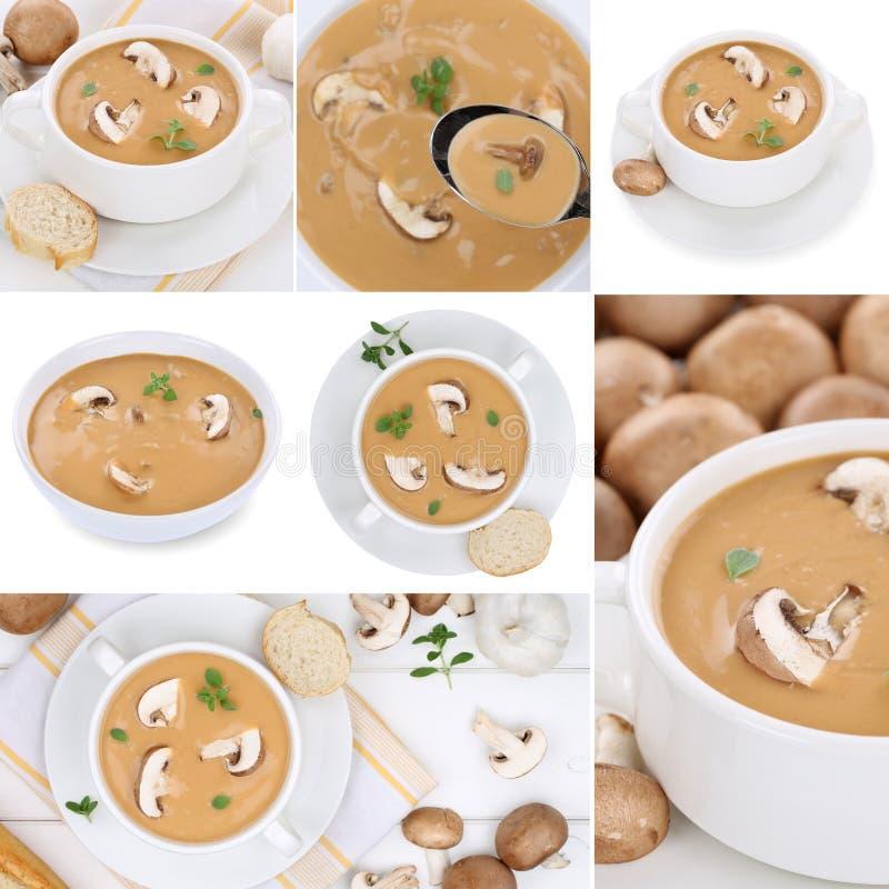 Colección de sopas de la sopa de champiñones con las setas en otoño imagen de archivo
