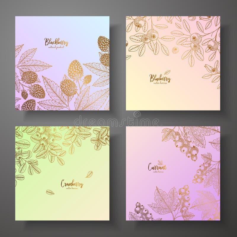 Colección de tarjetas cuadradas del oro con las bayas Ejemplo colorido del vector Puede ser utilizado para el papel de embalaje,  libre illustration