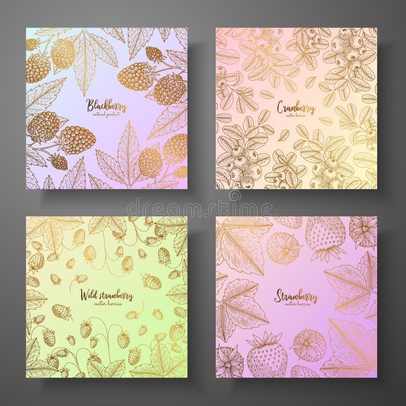 Colección de tarjetas cuadradas del oro con las bayas Ejemplo colorido del vector Puede ser utilizado para el papel de embalaje,  ilustración del vector