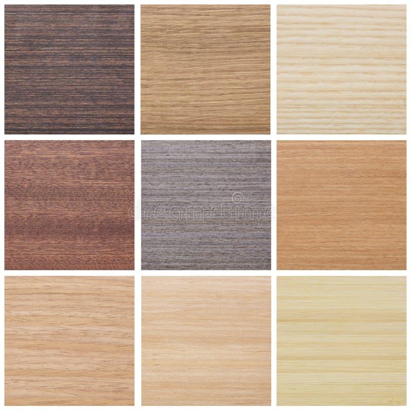 Colección de texturas de madera foto de archivo