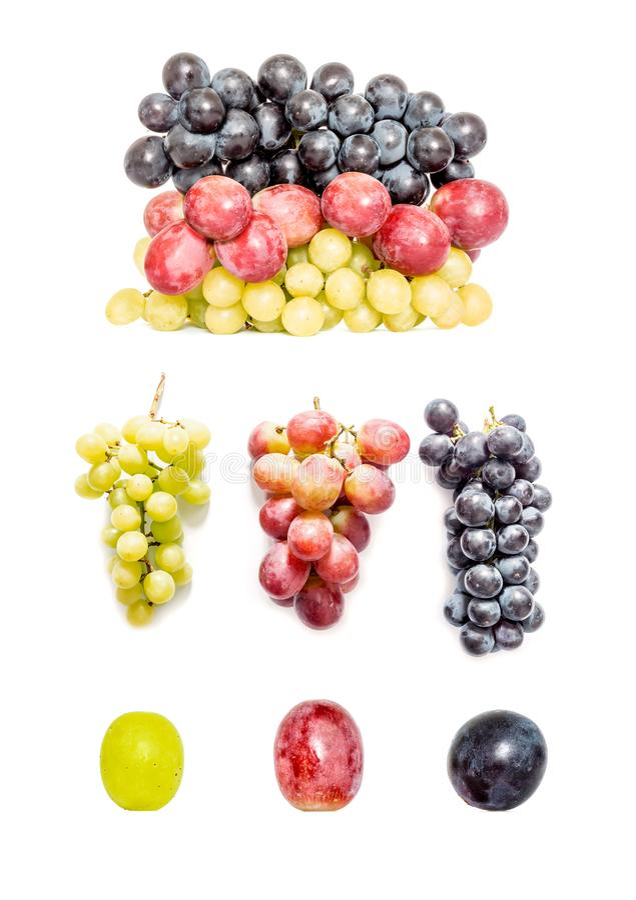 Colección de uvas verdes y azul marino rojas en diversas variaciones aisladas en el fondo blanco fotos de archivo libres de regalías