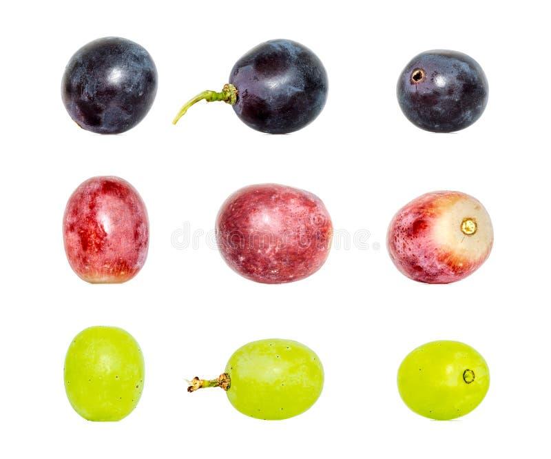 Colección de uvas verdes y azul marino rojas en diversas variaciones aisladas en el fondo blanco imagenes de archivo