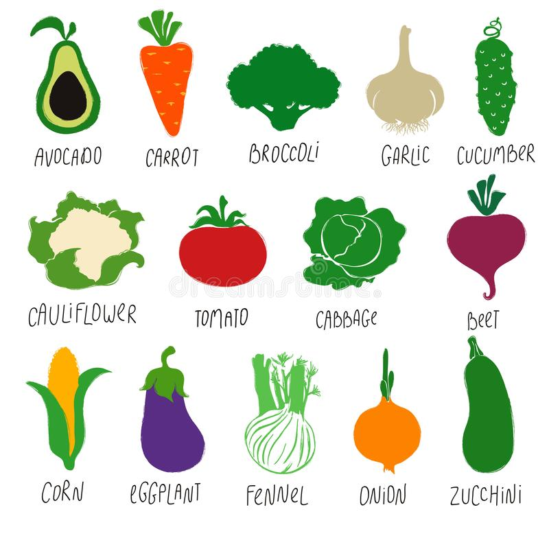 Colección de verduras coloridas de la historieta ilustración del vector
